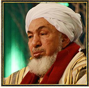 Shaykh Abdallah Bin Bayyah (Video)